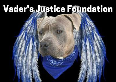 Vaders Justice Foundation